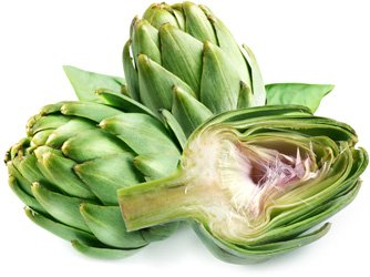 https://edaplus.info/food_pictures/artichoke.jpg